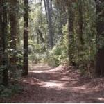 Tourist Attractions Near Bear Creek